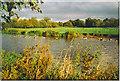 SU9945 : River Wey north of Farncombe. by Colin Smith