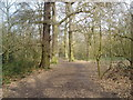 TQ4468 : Petts Wood, Kent by Dr Neil Clifton