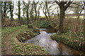 ST5856 : Stream Near Coley by Adrian and Janet Quantock