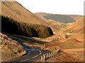 NT1612 : Upper Moffat Dale by arthur