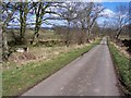 NY4637 : Road to Hutton Grange with curiosity on left by John Holmes