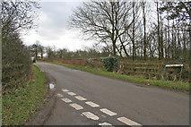 SK7212 : Klondyke Lane near Thorpe Satchville by Kate Jewell