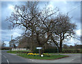 SJ6979 : Lane junction at Lower Feldy Green by michael ely