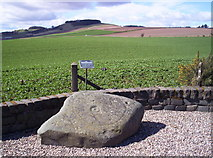 NO5249 : Girdlestane with Dunnichen Hill Behind by Dominic Dawn Harry and Jacob Paterson