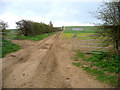 TL4742 : Farm track from Grange Road, Ickleton, Cambs by Rodney Burton