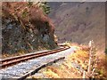 SN7377 : Vale of Rheidol Railway track by Rudi Winter