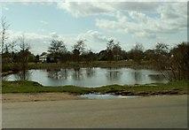 TL5311 : Village Pond at Matching Green, Essex by Robert Edwards
