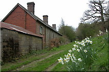 SO3483 : Cottages at Lodge Farm by Philip Halling