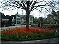 SD6950 : Tulips, Newton-in-Bowland by Alexander P Kapp