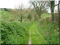 SX4066 : Track near Burraton by Derek Harper