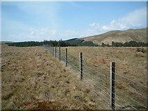 NS6781 : On Black Hill by Chris Wimbush