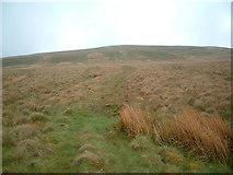 NS2461 : Lang Hill by Chris Wimbush