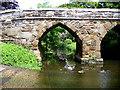 TL2247 : Medieval packhorse bridge, Sutton, Beds by Rodney Burton