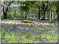 NR8297 : Templewood stone circle and bluebells. by Sharon Loxton