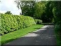 SE7542 : Throughleys Lane to White Farm by Roger Gilbertson