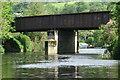 ST7165 : River Avon, Newbridge Railway Bridge by Pierre Terre
