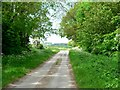 SE9036 : Cliffe Road, North Newbald by Roger Gilbertson