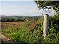 SW5630 : Fields near Halamanning by Sheila Russell