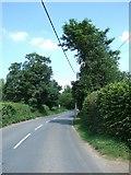 SP9504 : Approaching Bellingdon by Rob Farrow