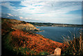 SW7214 : Cornish coast by R lee