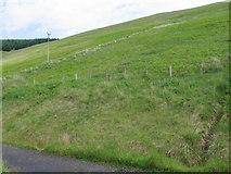 NT1019 : Hillside of Brawns Dod by Chris Wimbush