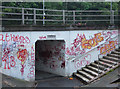 SJ6566 : Subway under A54, Winsford by michael ely