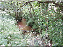 SW6833 : Stream at Porkellis Bridge by Sheila Russell