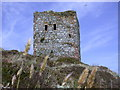 NX0299 : Castle on Ailsa Craig by Tony Page