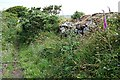 SW7134 : Bridleway from Stithians Lake to Carnkie by Tony Atkin