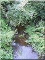 SP8417 : River Thame at Rowsham Bridge by Rob Farrow