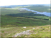 NX4696 : The northern slopes of Craiglee by Chris Wimbush