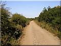 TA2633 : Longbrough Lane by Andy Beecroft