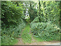 ST4692 : Path to Ancient Fort/Camp by Roy Parkhouse