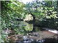 TQ1077 : River Crane in Cranford Park by Nigel Cox
