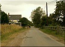 TL8703 : Country lane at Mundon, near Maldon, Essex by Robert Edwards