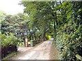 SJ5773 : Crowton - Sandhole Lane by Mike Harris