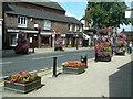 SJ5177 : Frodsham in Bloom by Neil Kennedy
