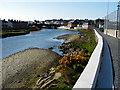 SN5881 : Riverside Walk Aberystwyth by John Lucas