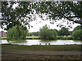 TQ4598 : Village Pond, Theydon Bois by Stephen Craven