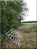 SP9526 : Hedge, gate and footpath, Clipstone by Rob Farrow