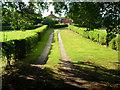 SU8213 : Van Dieman's Cottage by Simon Carey