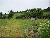 S6420 : Fields near Glenmore by Richard Webb