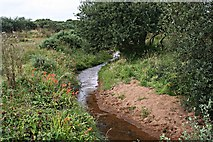 SW9560 : Stream on Goss Moor by Tony Atkin