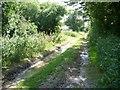 TM2090 : Boudica's Way by Andrew Longton