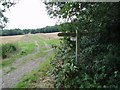 TQ3637 : Sussex Border Path near Tilkhurst Farm by Nigel Freeman