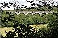 SW9350 : Railway Viaduct through the Trees. by Tony Atkin