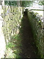 SE0236 : Footpath between 2 drystone walls, near Haworth by Nigel Homer