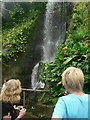 SX0455 : Waterfall, Humid Tropics Biome, Eden Project by Rich Tea