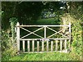 SW5930 : Gate, Balwest by Rich Tea