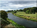 NJ8715 : River Don at Cothall by Richard Slessor